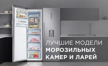 Какие модели морозильных камер и ларей лучше купить?